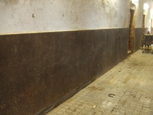 Stable Wall Before